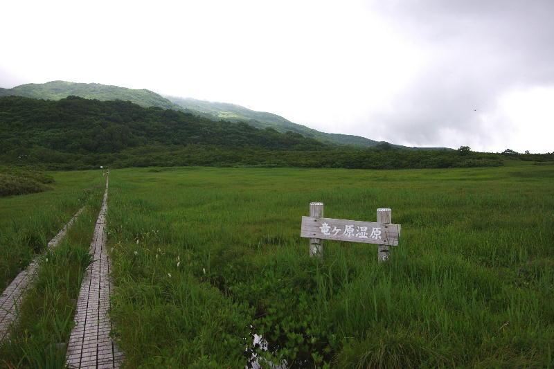 IMGP0032ryugaharasitugen.jpg