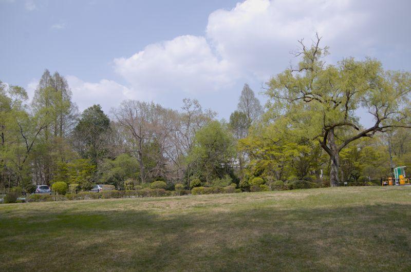 IMGP6345iriguchihomen.jpg